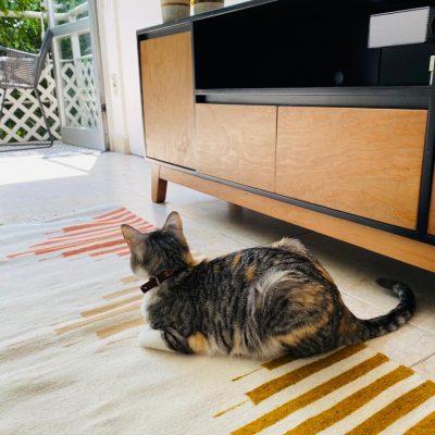 tapis artisanale en laine avec un chat