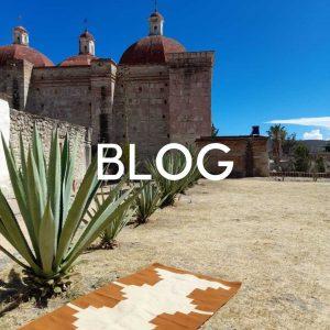 tapis mexicain et cactus